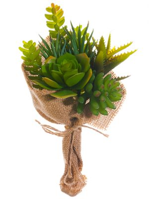 10 Succulent Garden Bouquet Green