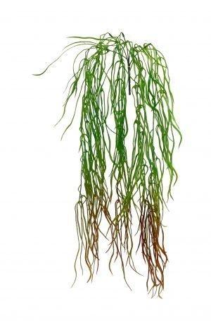 Cascading grass and seeds