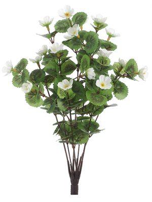 """11"""" Mini Geranium Bush x7 White"""