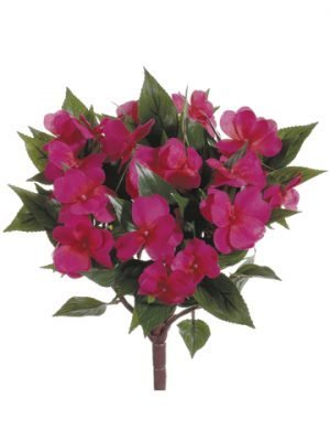 "13.7"" New Guinea Impatiens Bush Beauty"