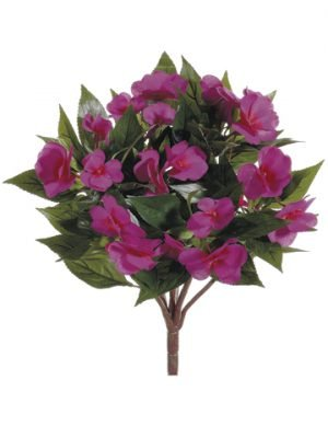 "13.7"" New Guinea Impatiens Bush Fuchsia"