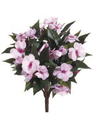 "13.7"" New Guinea Impatiens Bush Light Pink"