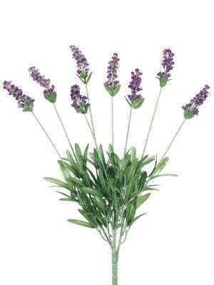 """19"""" Lavender Bush x8 Lavender Blue"""