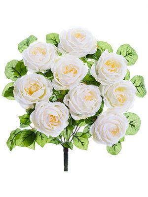 "20"" Rose Bush x9 Cream"