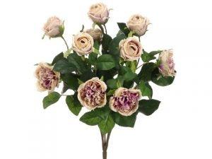 """16"""" Cabbage Rose Bush x10 Antique Lavender"""