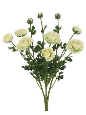 "19"" Ranunculus Bush with 7Flowers and 3 BudsCream"