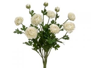 "19"" Ranunculus Bush with 7 Flowers and 3 Buds White"