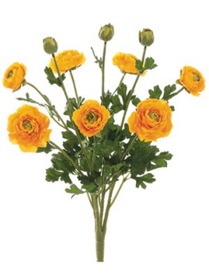 """19"""" Ranunculus Bush with 7Flowers and 3 BudsYellow"""