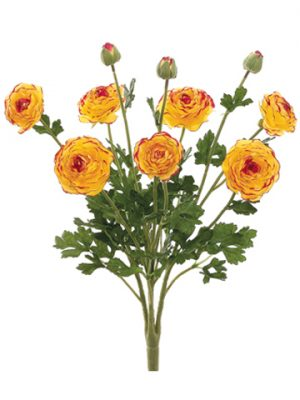 """19"""" Ranunculus Bush with 7Flowers and 3 BudsYellow Burgundy"""