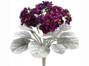 """12"""" African Violet Bush Eggplant"""