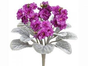 "12"" African Violet Bush Fuchsia"