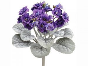 "12"" African Violet Bush Purple"