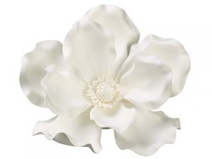 "13"" Magnolia Hanging Flower Head Cream White"