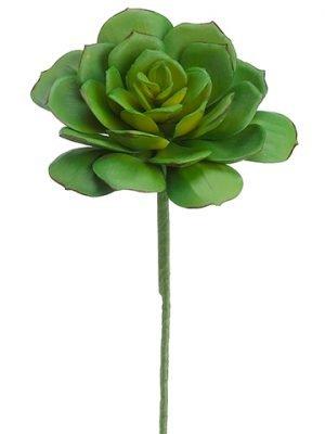 "9.5"" Echeveria Bouquet PickGreen"