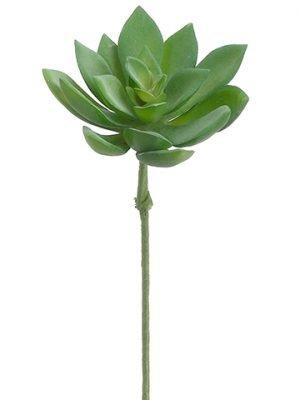 """9.5"""" Small Echeveria BouquetPickGreen Gray"""