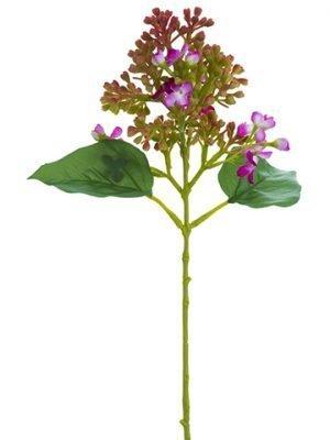 """13.5"""" Lilac Pick Boysenberry"""