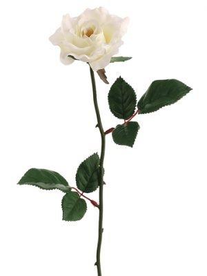 "23"" Single Medium Rose Sprayx1Cream"