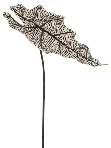 "20"" Zebra Print Alocasia Leaf Spray Cream Black"