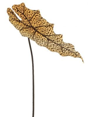 "20"" Leopard Print Alocasia Leaf Spray Yellow Brown"