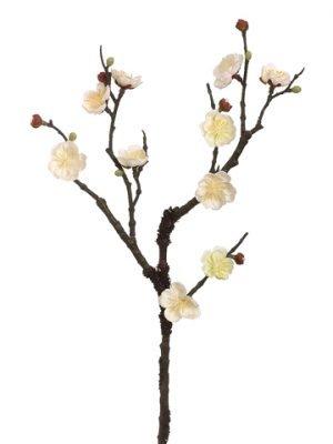 """18"""" Plum Blossom Spray Cream"""