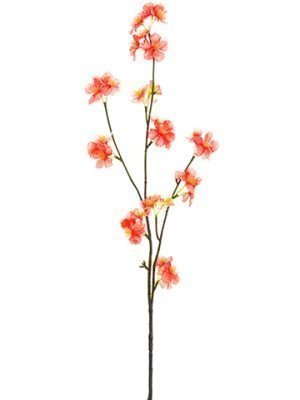 "31"" Quince Blossom SprayCoral"
