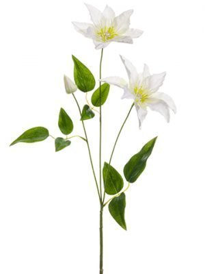 "20"" Clematis w/Rhinestone Spray White"