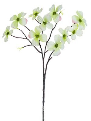 "27"" Dogwood Spray Green Cream"