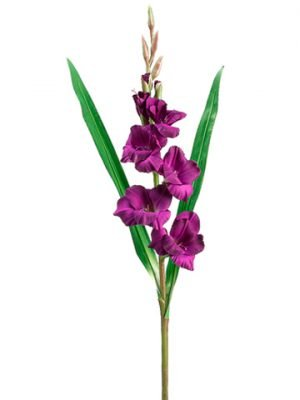"33"" Gladiolus Spray Purple"