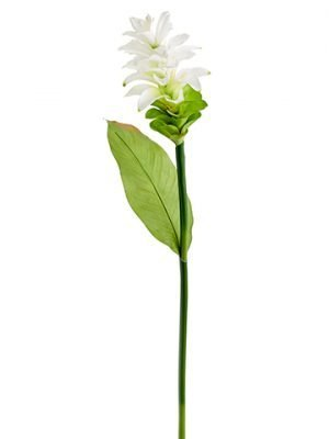 """35"""" Ginger Flower Spray White"""