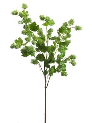 """40"""" Hops Spray Green"""