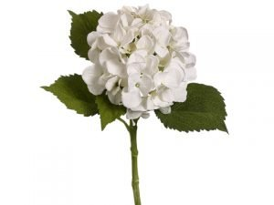 "19"" Hydrangea Spray with Water-Resistant Stem White"