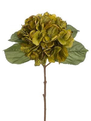 "18"" Hydrangea Spray Olive Green"