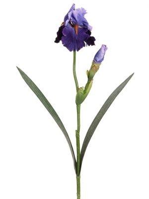 """28"""" Bearded Iris Spray withWater-Resistant StemPurple Blue"""