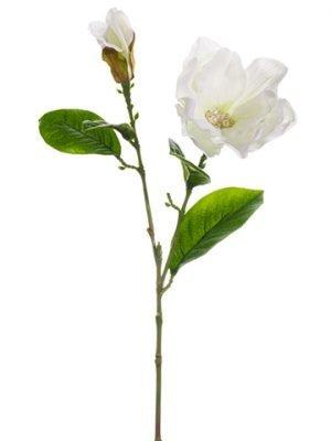 "23"" Magnolia with RhinestoneSprayWhite"
