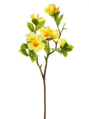 "36"" Mandevilla Spray Two Tone Yellow"