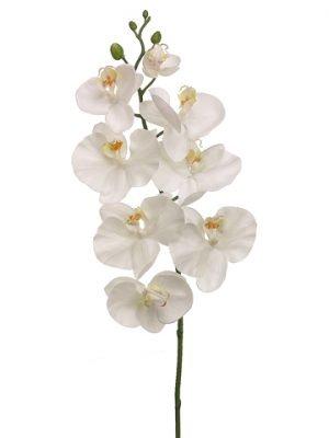 "30"" Phalaenopsis Orchid Spray White"
