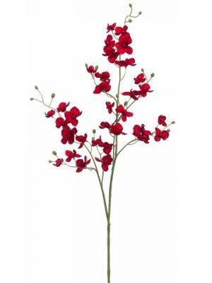 "39"" Phalaenopsis Orchid Spray Red"
