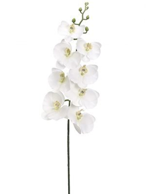 "32"" Phalaenopsis Orchid with Rhinestone Spray White"