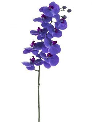 "36"" Phalaenopsis Orchid Spray with 9 Flowers and 2 Buds Purple"