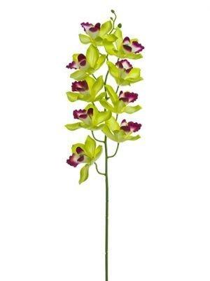 """30"""" Cymbidium Orchid Spray Green Burgundy"""