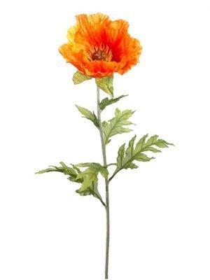 """28"""" Poppy Spray Orange"""