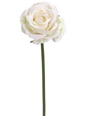 "19"" Rose SprayCream Blush"