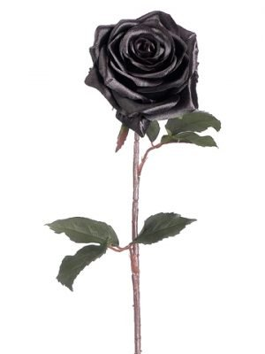 "21.5"" Black Magic Rose Spray Black"