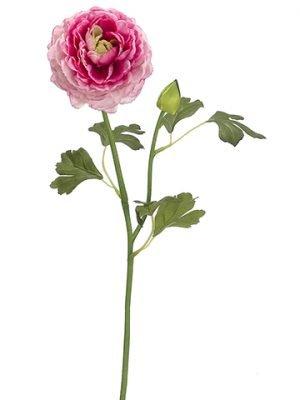 "19"" Ranunculus Spray Cerise Pink"