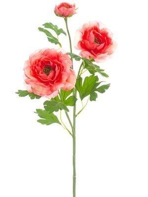 "24"" Ranunculus SprayCoral"
