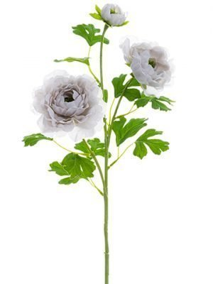 "24"" Ranunculus Spray  Gray"
