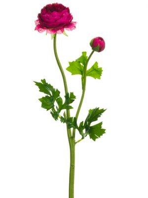 "18.9"" Ranunculus Spray Boysenberry"