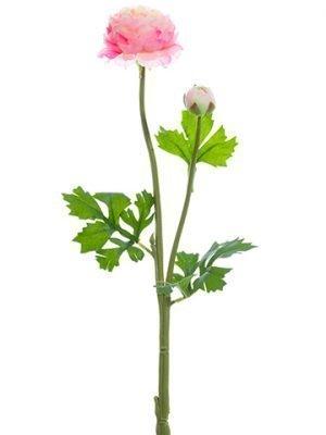 "18.9"" Ranunculus Spray Pink Cream"