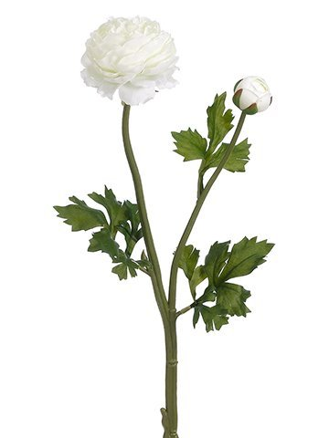 "18.9"" Ranunculus Spray White"