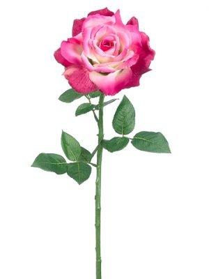 """26"""" Diana Rose Spray Two Tone Beauty"""
